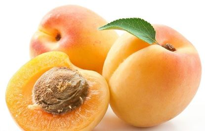 Picture of APRICOT SOAP