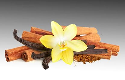 Picture of CINNAMON VANILLA SOAP