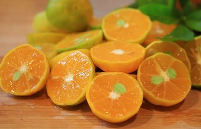 Picture of SOY WAX MELTS - SWEET MANDARIN & BASIL