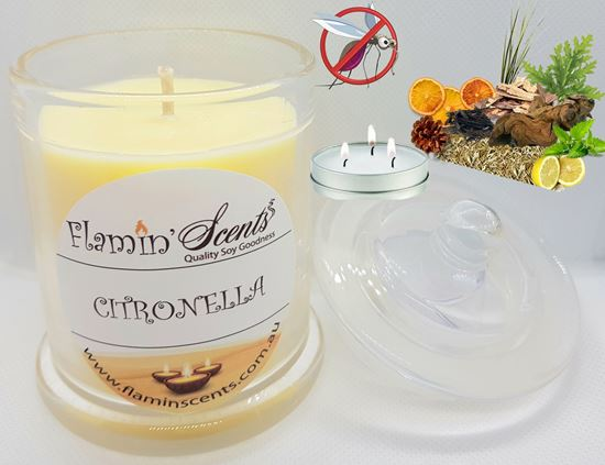 Picture of CITRONELLA CANDLE